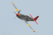 red-tail_p-51_7756