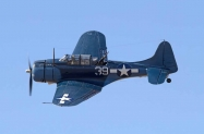 SBD Dauntless (7)