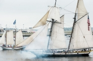 61717-Sail-Boston-5622