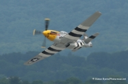 P-51_NeverMiss_Reading