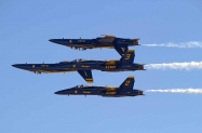 Blue Angels (10)