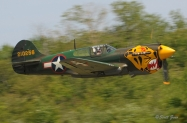 Owls_Head_TFL_P-40_Warhawk_2258