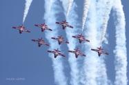 RCAF_Snowbirds_1120