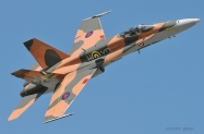 RCAF_CF-18_Demo_3642