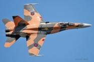 RCAF_CF-18_Demo_4539