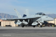 25 EA-18G_166939_VAQ-132_NL544_Nellis AFB_3