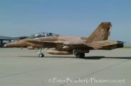42 FA-18B_162850_VFA-125_02-2006_2