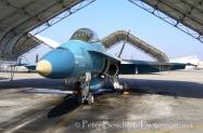 44 FA-18B_162876_VFA-125_02-2006_2