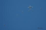KC-130_F-18_Refuel_Yuma_2006_0115