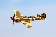 POF P-40