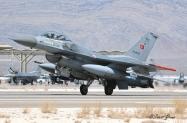 2008_Nellis_RF_Turkish_AF_4094