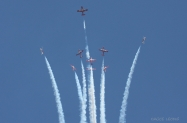 RCAF_Snowbirds_0355