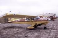 Beagle-A-109-Airedale