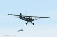 Enhc Piper L-4H   Grasshopper-7197-2