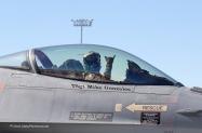 F-16 RLNAF  (4)[1]