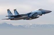 F-15 65th (15)