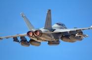 EA-18 VAQ 138 (2)
