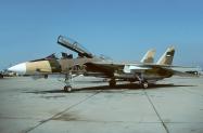 F-14A_159607_IRIAF_camo_1993_1024_Fi