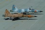 15 F-5E_160795_AF05_4-2006_1024
