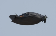 Blackflies-5-2