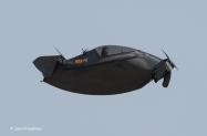 Blackflies-5