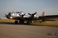 hrutkay_bomber-plant_03