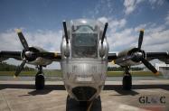 hrutkay_bomber-plant_14